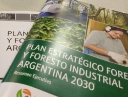 Plan Foresto Industrial 2030